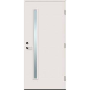 TIINA 1R su stiklu - dažytos lauko durys