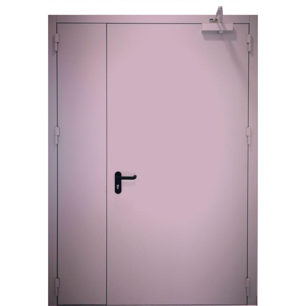 violetinės spalvos metalinės dvivėrės lauko durys PROTECTUS, vienvėrės ir dvivėrės