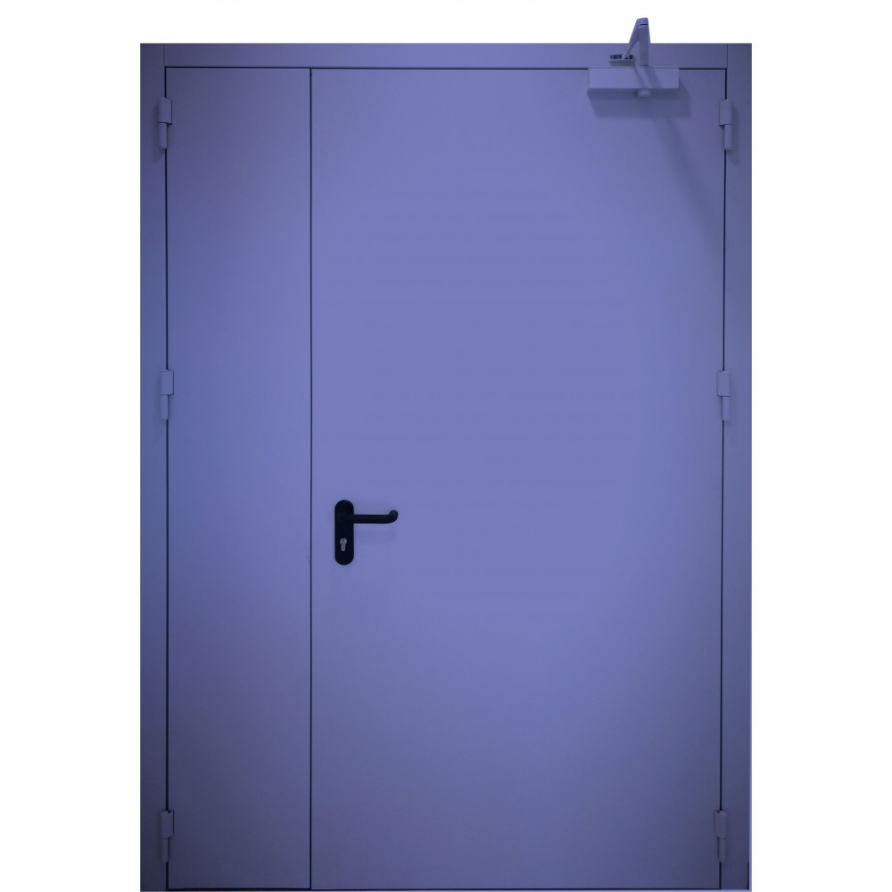 mėlynos spalvos metalinės dvivėrės lauko durys PROTECTUS, su stiklinimu ir be jo