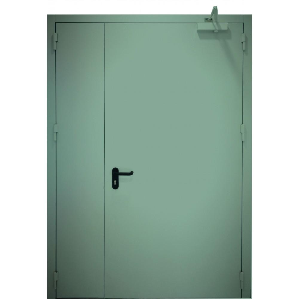 mėtinės žalios spalvos metalinės dvivėrės lauko durys PROTECTUS, atsparios ugniai