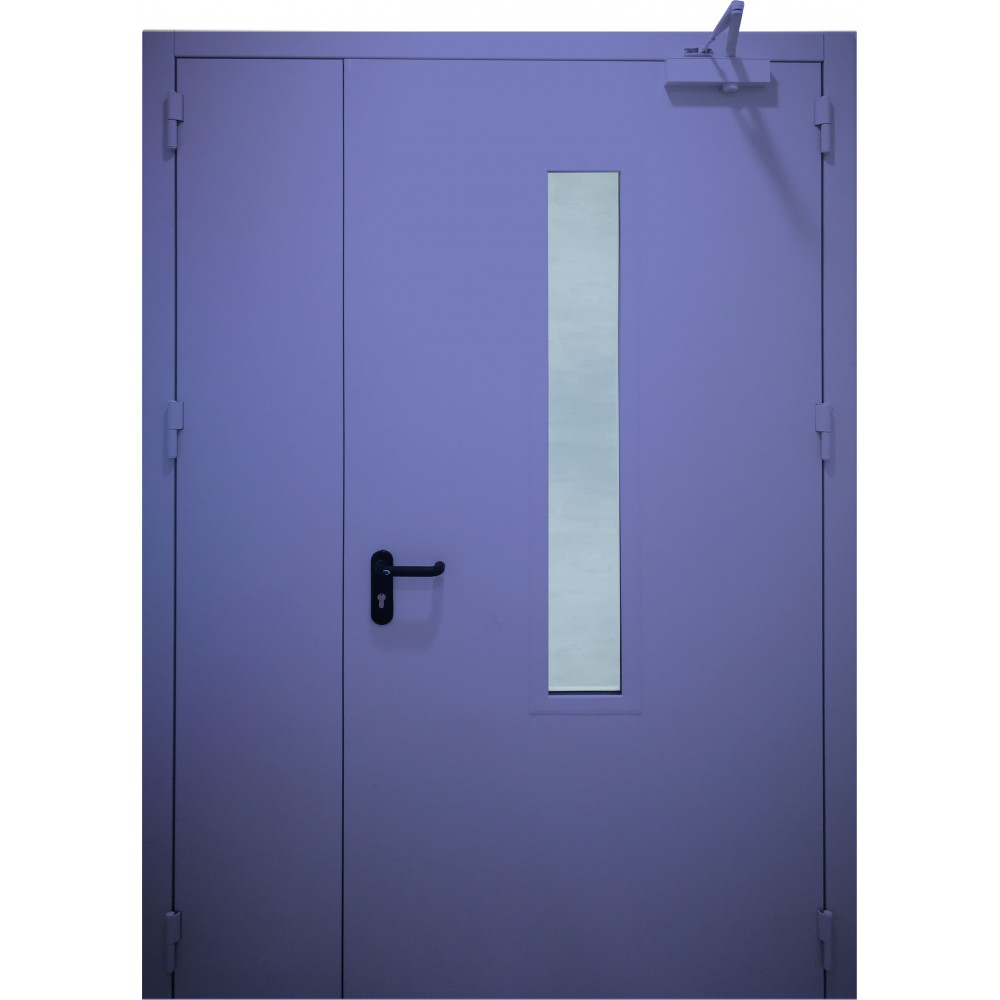 mėlynos spalvos metalinės dvivėrės lauko durys su stiklu PROTECTUS, su stiklinimu ir be jo