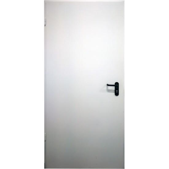 "METALINĖS LAUKO PRIEŠGAISRINĖS DURYS  ""PROTECTUS""  EI60 - 429.75eur. Metalinės priešgaisrinės lauko durys, www.doorshop.lt"