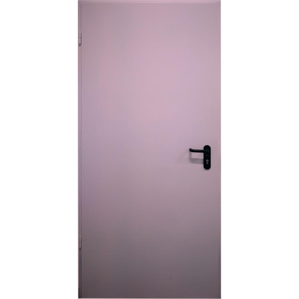 violetinės spalvos metalinės lauko priešgaisrinės durys PROTECTUS, vienvėrės ir dvivėrės
