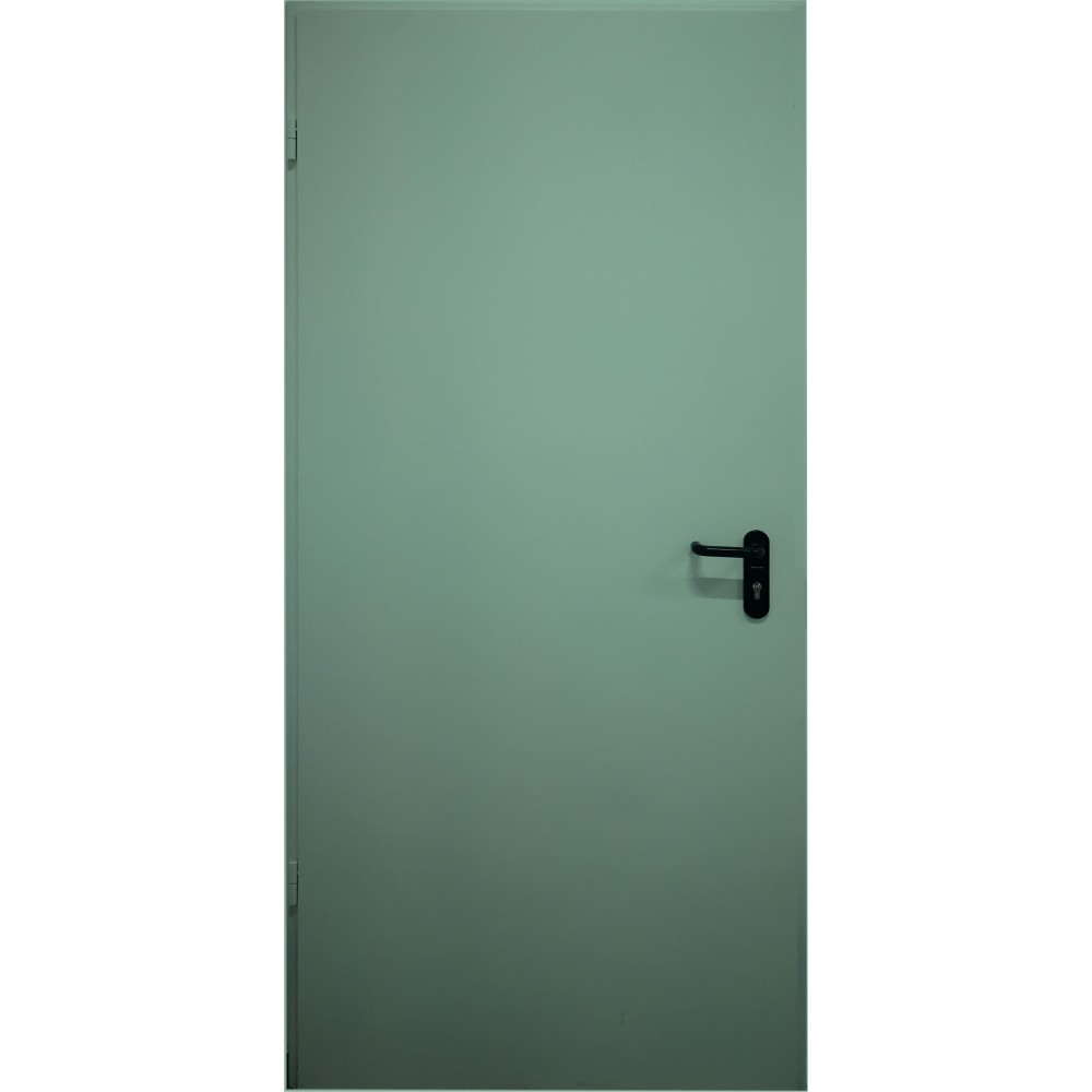 mėtinės žalios spalvos metalinės lauko priešgaisrinės durys PROTECTUS, atsparios ugniai
